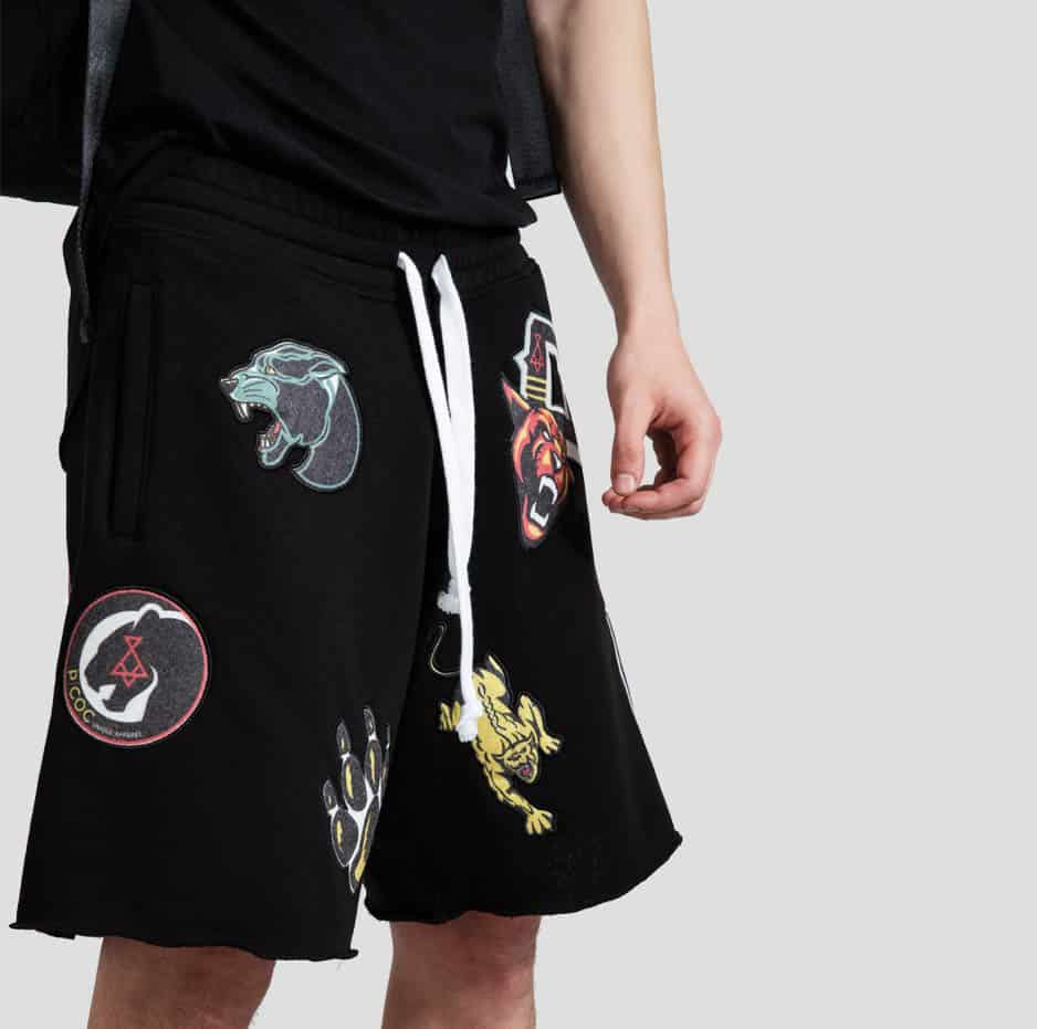 Shorts with embroideries